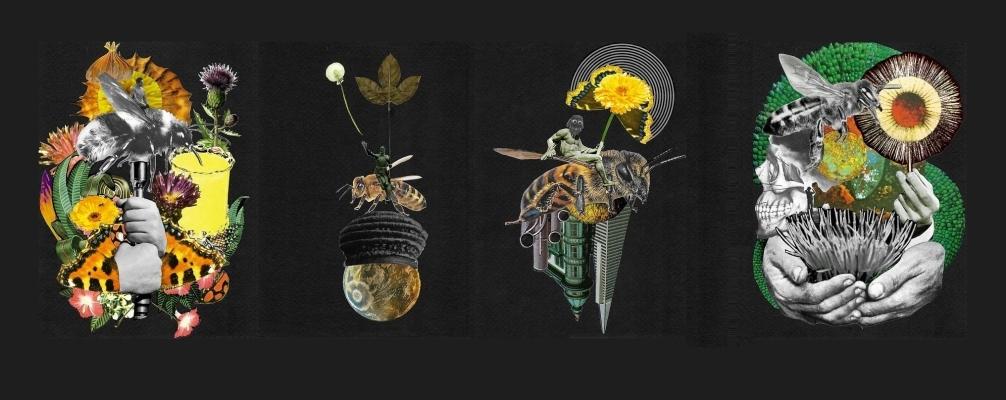 Sirius Bee Rescue Pack! Gratis bloemen zaai pakket bij jouw online bestelling